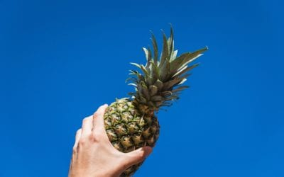 For the Love of Pineapple: Taking a Closer Look at  Bromelain